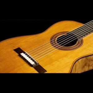 vendita chitarre classiche
